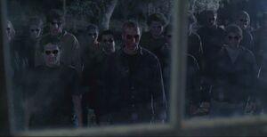 Mathias' Zombies