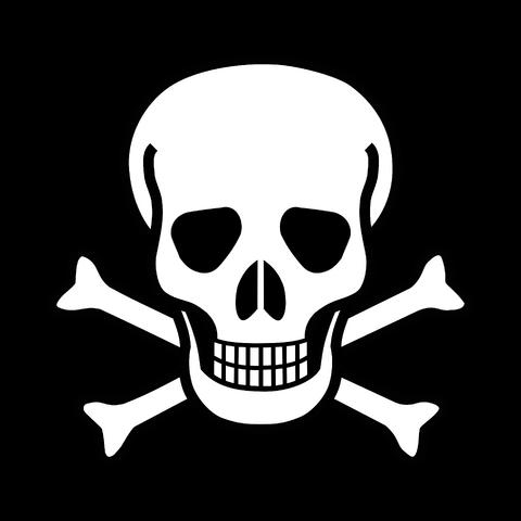 File:Skull & Crossbones.png