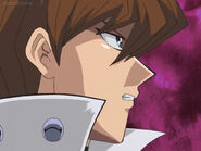 All about kaiba