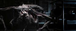 The Thing (6)