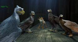Size Eagle-Foursome