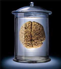 File:Brain-in-jar.png