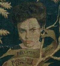 Bellatrix of the Black Family Tree
