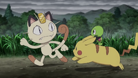 Pikachu, Meowth and Squishy (XY098)