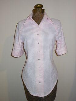 Pink Gingham Shirt.1