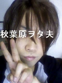 File:Akibaota-P.jpg