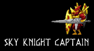 Sky Knight Captain