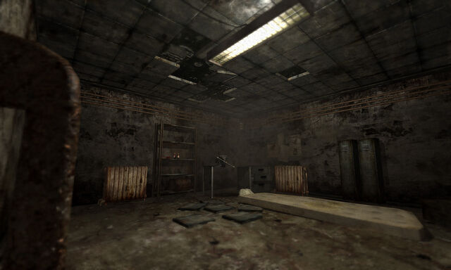 File:Penumbra Black Plague screenshot.jpg