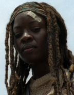 TFG Michonne Over Gov