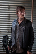 Daryl 12
