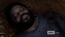 WHW Tyreese Dead