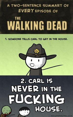 File:Funny-Walking-Dead-Carl-TV-series-434x698.jpg