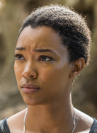 Season seven sasha williams