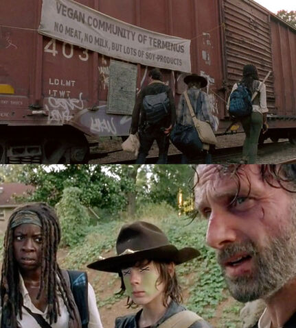 File:Michonne-carl-rick.jpg