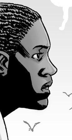 File:Michonne 140 (3).png
