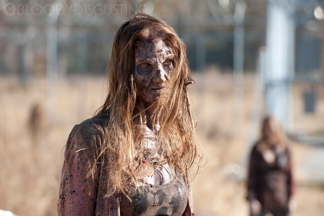 File:The-walking-dead 3x16 final.jpg