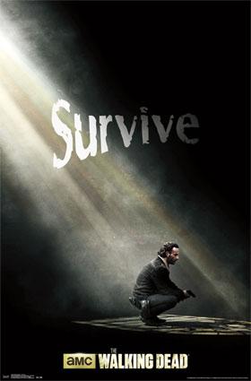 File:Walking Dead - Survive.jpg
