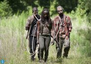 409 Michonne Pet Walkers