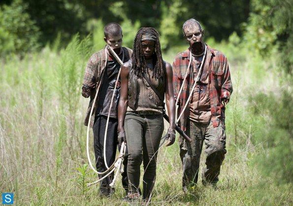 File:409 Michonne Pet Walkers.jpg