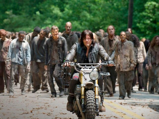 File:Daryl and the Herd.jpeg