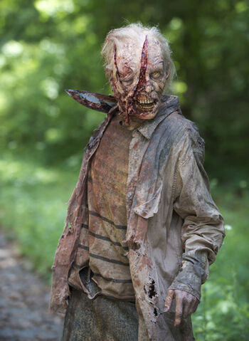 File:The-walking-dead-season-6-walkers-658px-1.jpg