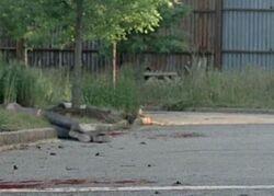 Alexandria Resident Death JSS (10)