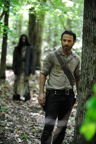 File:The-walking-dead-season-4-HD.jpg