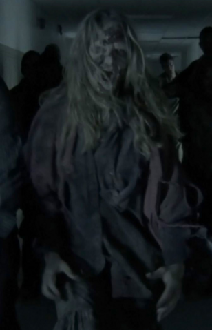 File:Michelle Flanagan-Helmeczy as walker.png