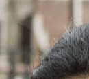 Luciana (Fear The Walking Dead)