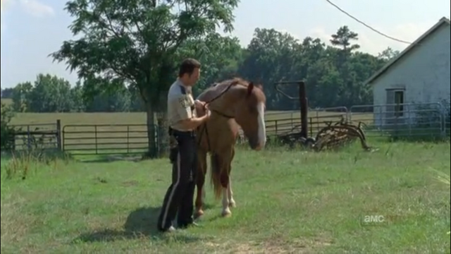 File:Horse and rick3.png