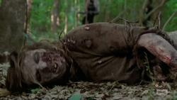 Michonne's Walker