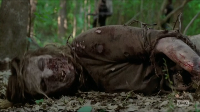 File:Michonne's Walker.png