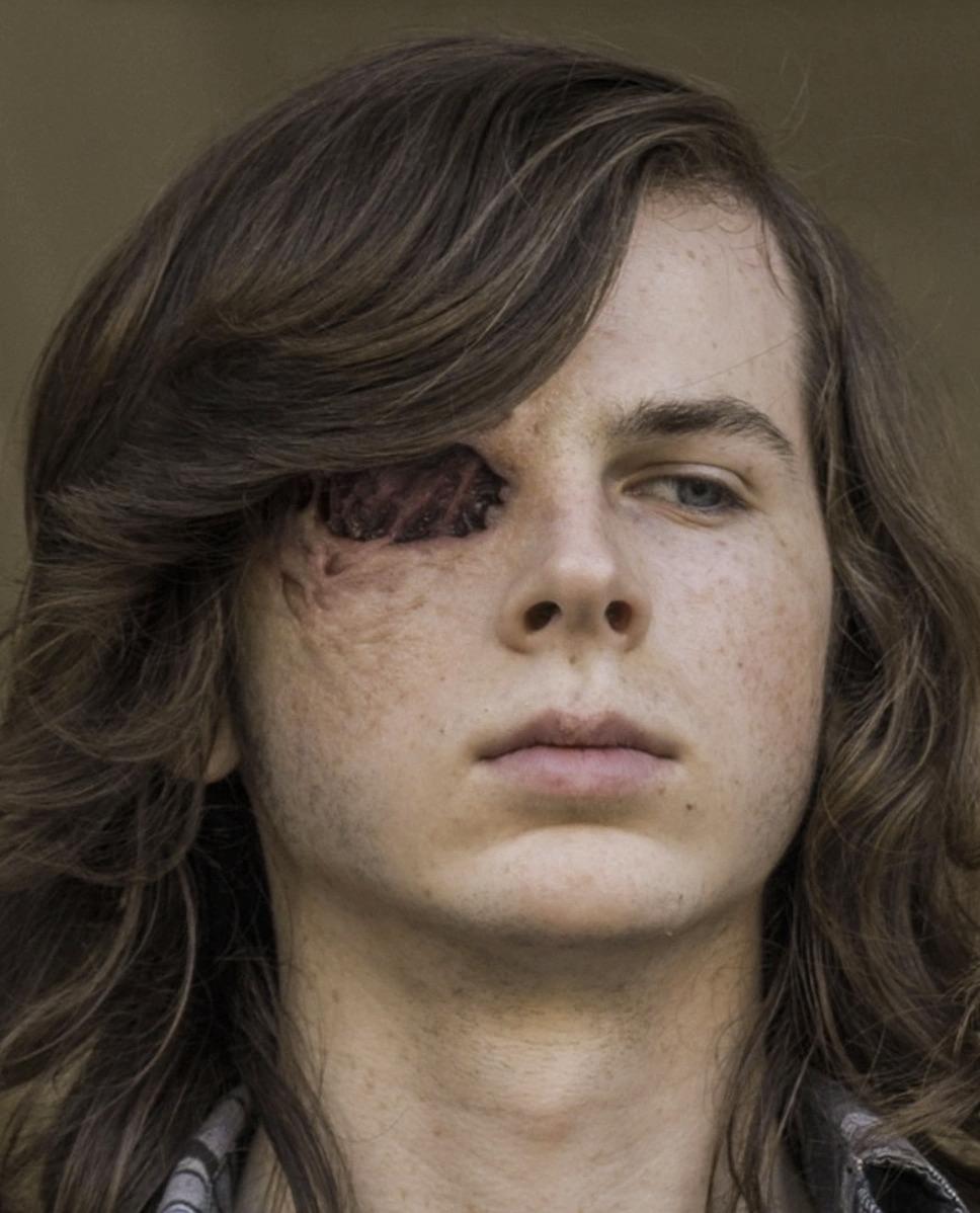 Carl Grimes Tv Series Walking Dead Wiki Fandom Powered By Wikia