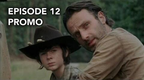 "The Walking Dead 3x12 Promo ""Clear"""