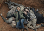 AMC 516 Sasha Walker Pile