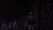 SFH Back Through the Woods