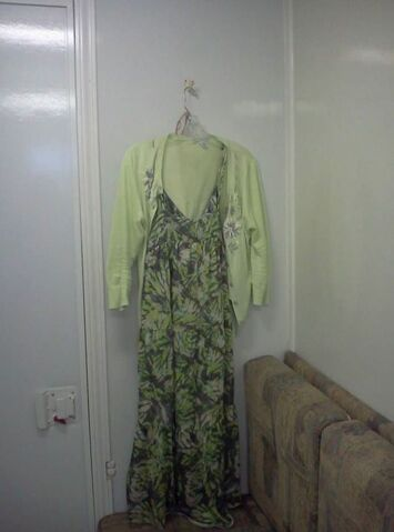 File:Amy Cain's Outift.JPG