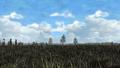 Thumbnail for version as of 03:11, September 23, 2014