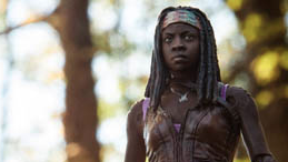 File:Michonne Series 3 Action Figure HS.png