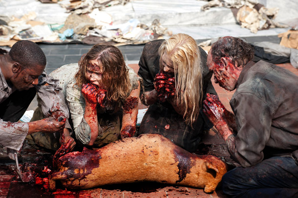 File:Walking-Dead-dog 610.jpg