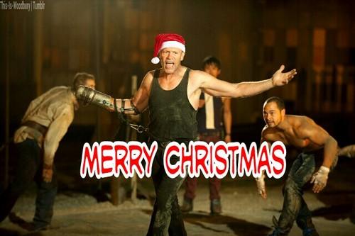 File:Christmas Merle.jpg
