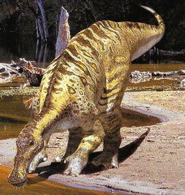 AnatotitanInfobox2