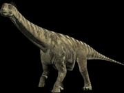 Camrasaurus