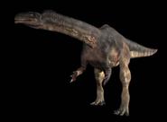 Plateosaurus ITW