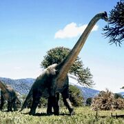 BrachiosaurusPromo