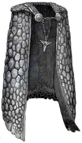 File:Salamanders Mantle - Salamanders.jpg