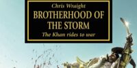 Brotherhood of the Storm (Novella)