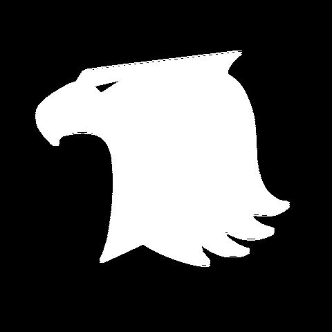 File:Iron Hawks 2000x2000.png