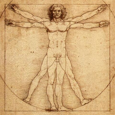 File:Vitruvian-Man.jpg