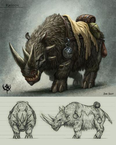 Rhinox